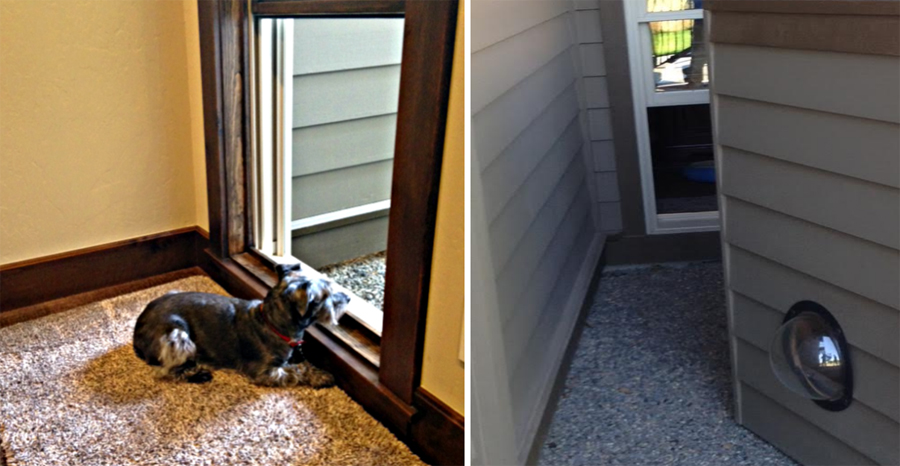 Residential Design For Your Pet in Bend