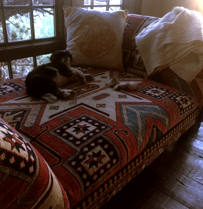 Bend Oregon Residential Design For Your Pet